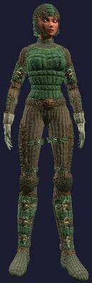 Misthide (Armor Set) (Visible, Female)