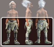 Curate's Plate Greaves (Equipped)