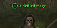 A defiled mage