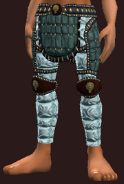 Exquisite woven pants (Equipped)