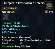 Thurgardin Frostwalker Bracers