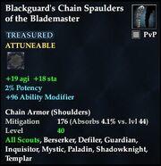 Blackguard's Chain Spaulders of the Blademaster