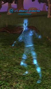 A Caltorsis protector