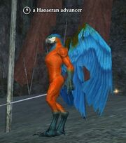 A Haoaeran advancer (Timorous Deep)
