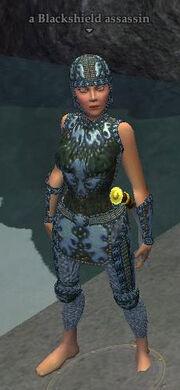 A Blackshield assassin (Timorous Deep) (half elf)