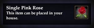 File:Single Pink Rose.jpg
