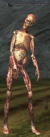 An undead caretaker