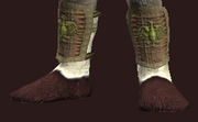 Naturalist's Sewn Leather Boots (Equipped)