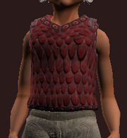 Cuirass of the Gazer (Equipped)