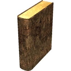 BrownBook06