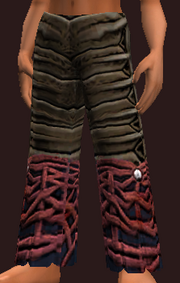 Magus's Spellbound Weave Leggings of Blasting (Equipped)