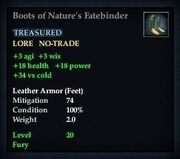 Boots of Nature's Fatebinder