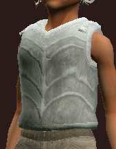 Reverent Curate's Plate Cuirass (Equipped)