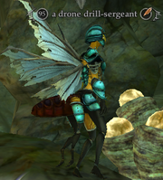 A drone drill-sergeant