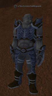 A Steelcrown battleguard