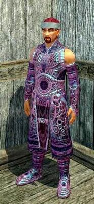 Woven Shadow (Armor Set) (Visible, Male)