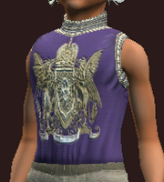 Striking woven tunic (Equipped)