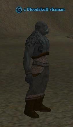 File:A Bloodskull shaman.jpg