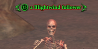 A Blightwind follower