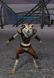 A ravenous gnoll
