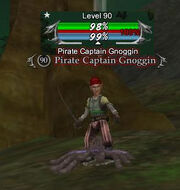 Pirate Captain Gnoggin