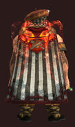 Cloak of the Grandmaster Provisioner (Visible)