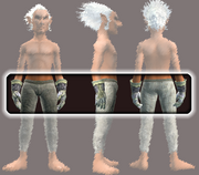 Vagabond's Chain Gloves (Equipped)