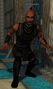 A Tears assassin (Court of Tears)