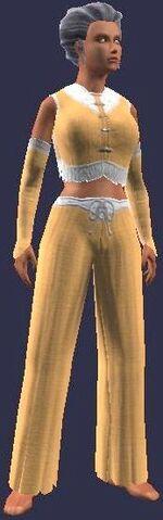 File:Silent Fist Initiate (Armor Set) (Visible, Female).jpg