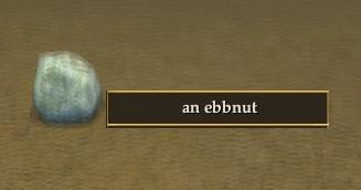 File:An ebbnut.jpg