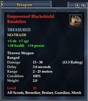 Empowered Blackshield Bandolier