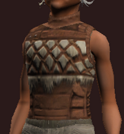 Earthkeeper's Tunic (Equipped)
