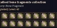 Unscathed bone fragments collection