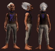Corrupted Mist Panther Skin Tunic (Equipped)