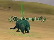 Thrumplate
