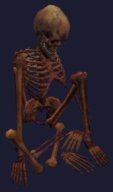 File:A tortured halfling skeleton (Visible).jpg