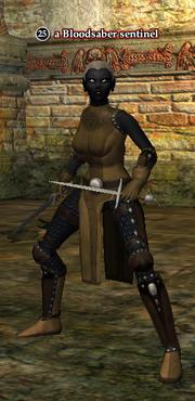 A Bloodsaber sentinel (dark elf)