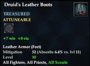 Druid's Leather Boots