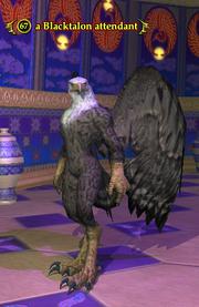 A Blacktalon attendant