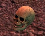 Remains of the Slain starter