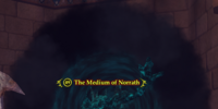 The Medium of Norrath