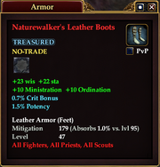 Naturewalker's Leather Boots
