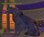 A merciless pet guardian