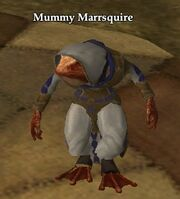 Mummy Marrsquire