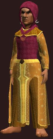 Resplendent Thaumaturge's Robe (Equipped)