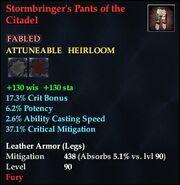 Stormbringer's Pants of the Citadel
