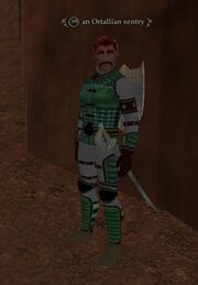An Ortallian sentry