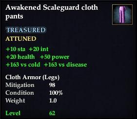 File:Awakened Scaleguard cloth pants.jpg