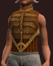 Elysian Hauberk of the Gambler (Equipped)