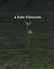 Hate blossom